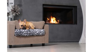 Dog beds design & comfort
