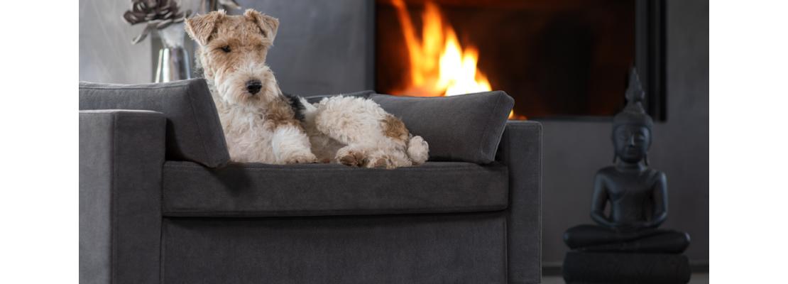 Luxury ped pet sofa