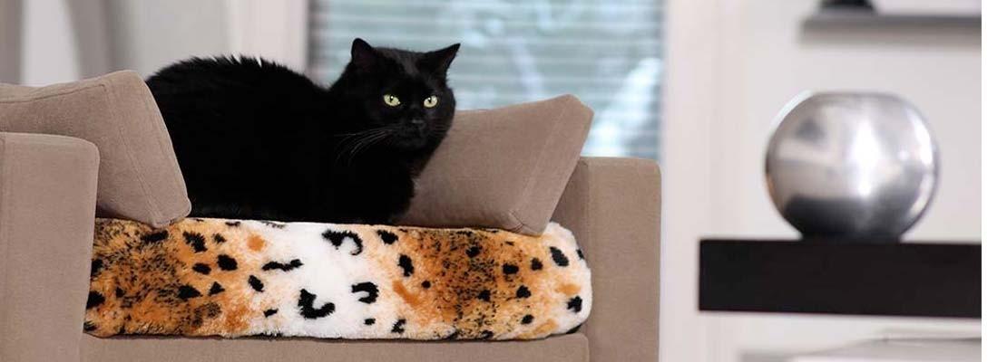 Lit pour chiens et chats & accessoires