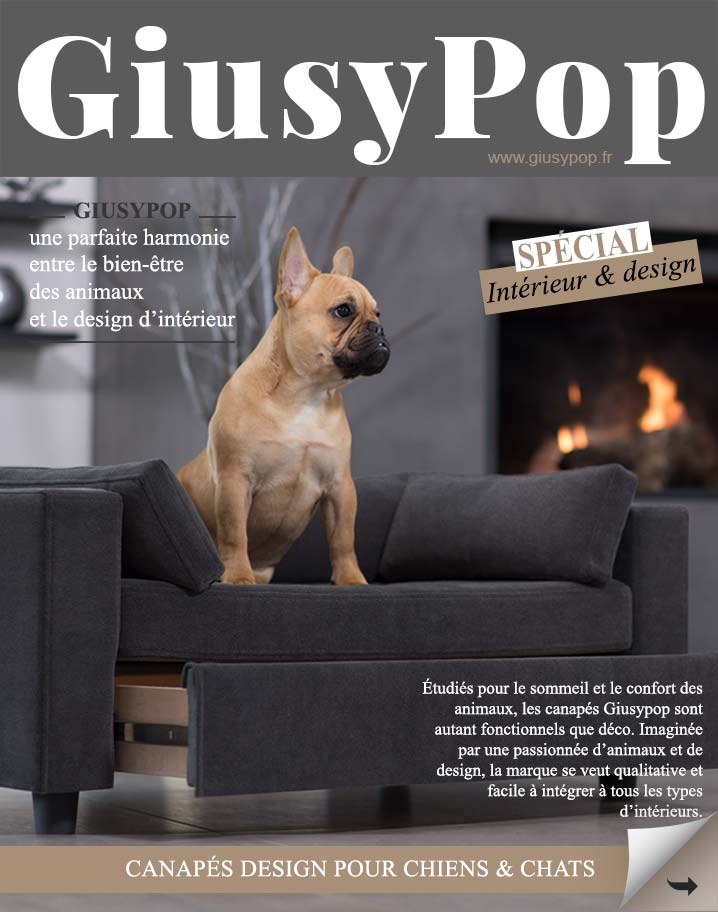 dimension canape chien
