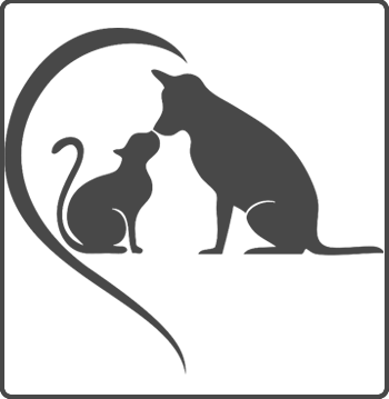 donation protection animaux