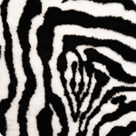 pet plaid zebra