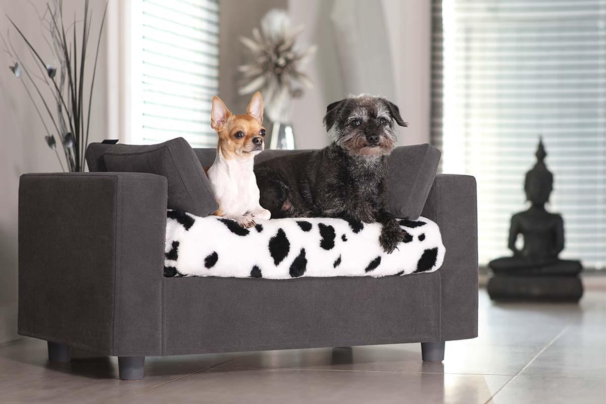 fauteuil pour chien dehoussable original et moderne