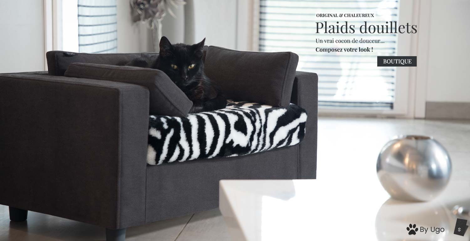fauteuil chat luxe
