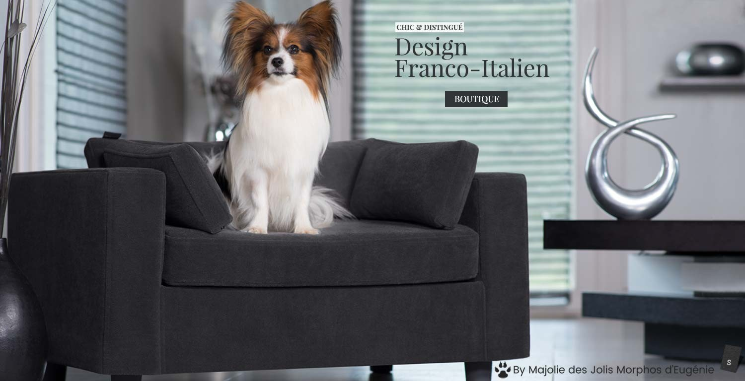 canape luxe chien chat