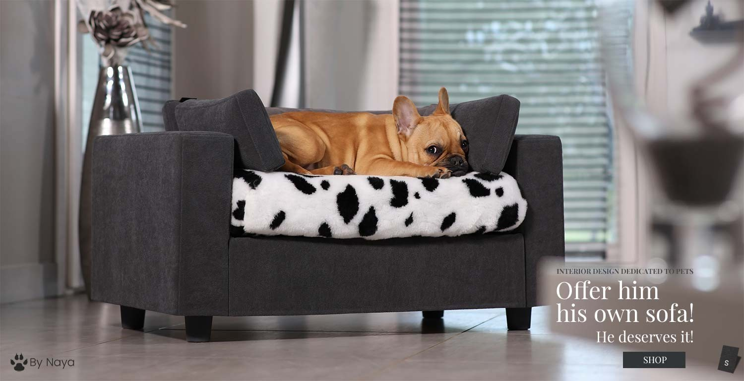 luxury pet sofa