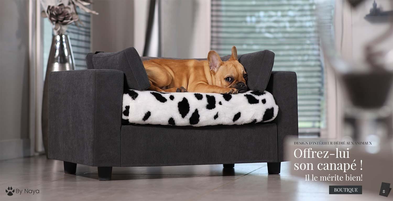 canapé luxe pour chiens et chats